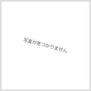 画像1: デッキケースセットEX Z/X IGNITION 「各務原あづみセット」
