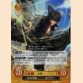 B10-029 R 疾黒の剣客 シヴァ