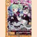 ホロ B31-032 R ショコラ・ソムリエ メインクーン