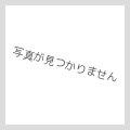 """バディレア H-SS01/0047 ジャックナイフ""""スペリオルプラズマ"""""""